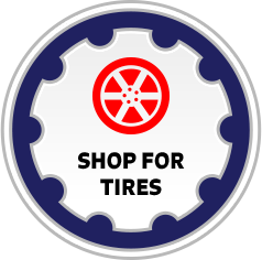 tire catalog for passenger car and light truck tires